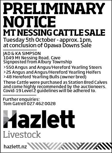 11 What's On Hazlett New zealand